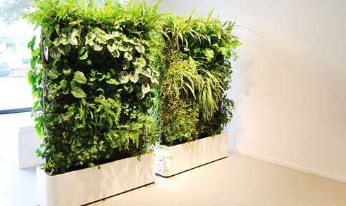 vertical gardening company in Chennai