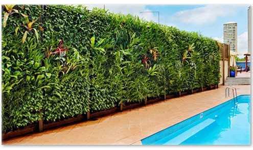 Best vertical gardening company in Chennai